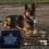 Daxa, Regimental #17